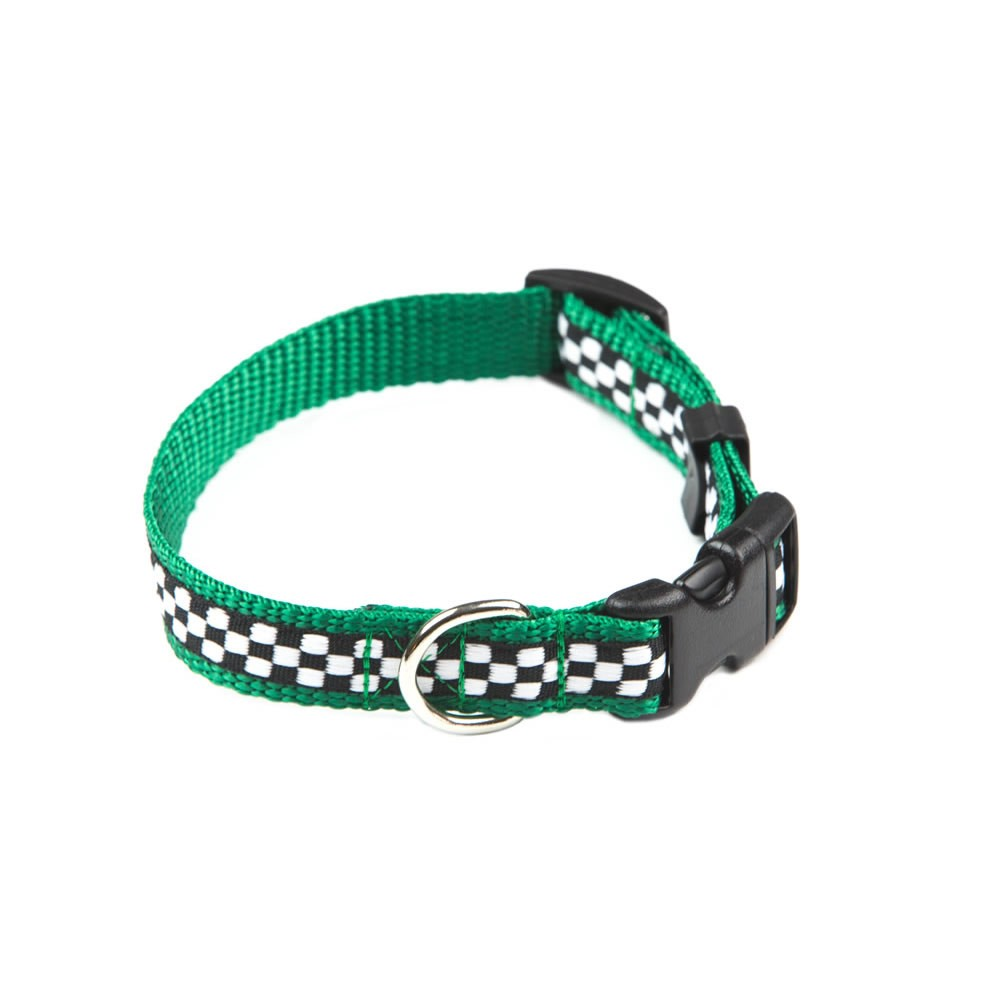 designer dog collars - photo #4