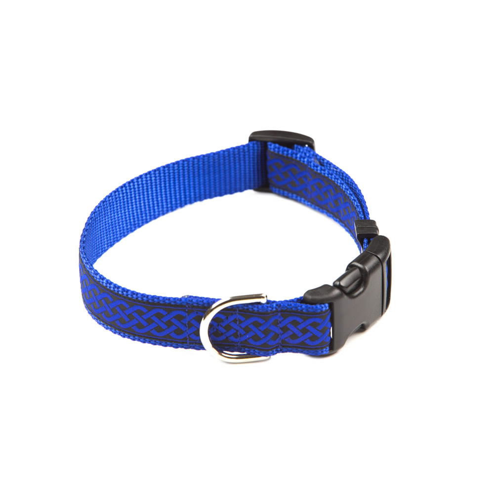designer dog collars - photo #27
