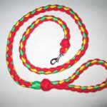 Webbing/Fleece Leashes