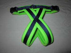 Seahawks neoprene harness