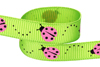 Bright Green grosgrain with Pink Ladybugs