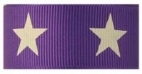 White star on purple grosgrain ribbon