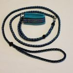 Martingale-Paracord Round Leash Combo